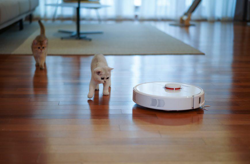 7 migliori robot mop del 2021, secondo gli esperti di pulizia